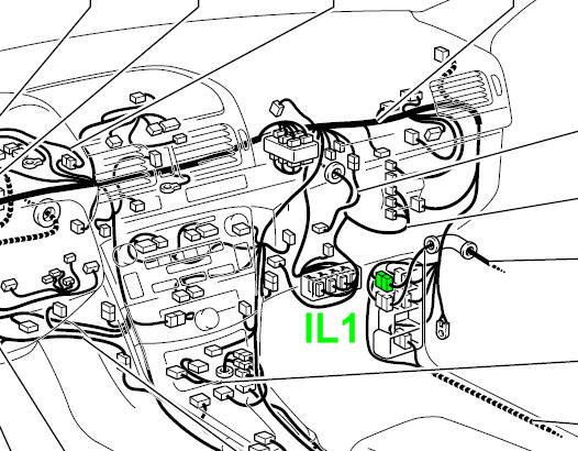 T25_IL1_pos.jpg