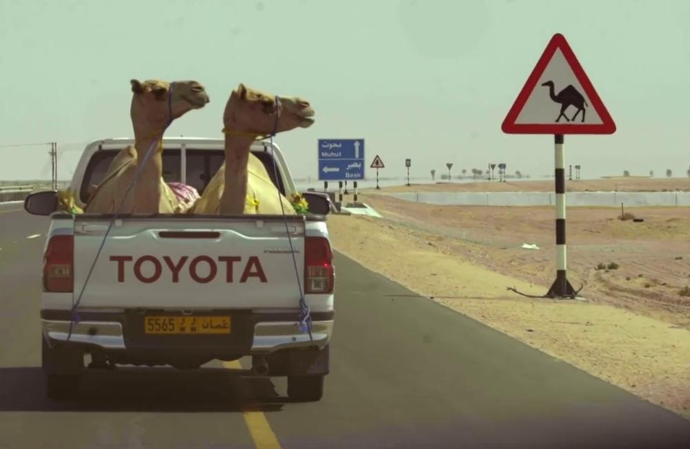 Toyota Kamele.png